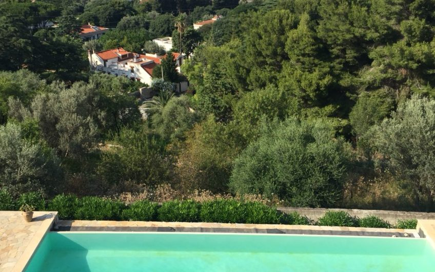 Villa unifamiliare con Piscina + Terreno