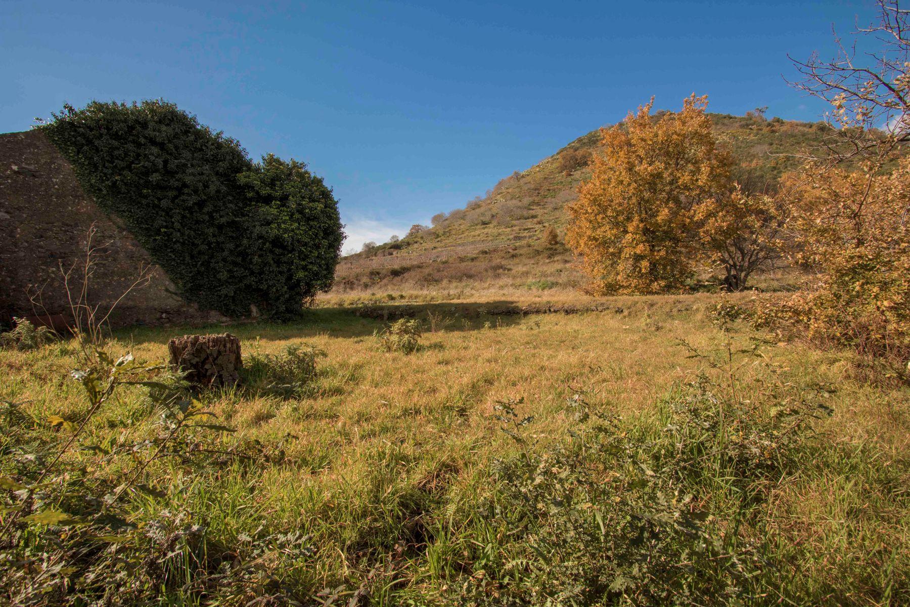 A Trecastagni rustico su 10000mq di terreno 1445